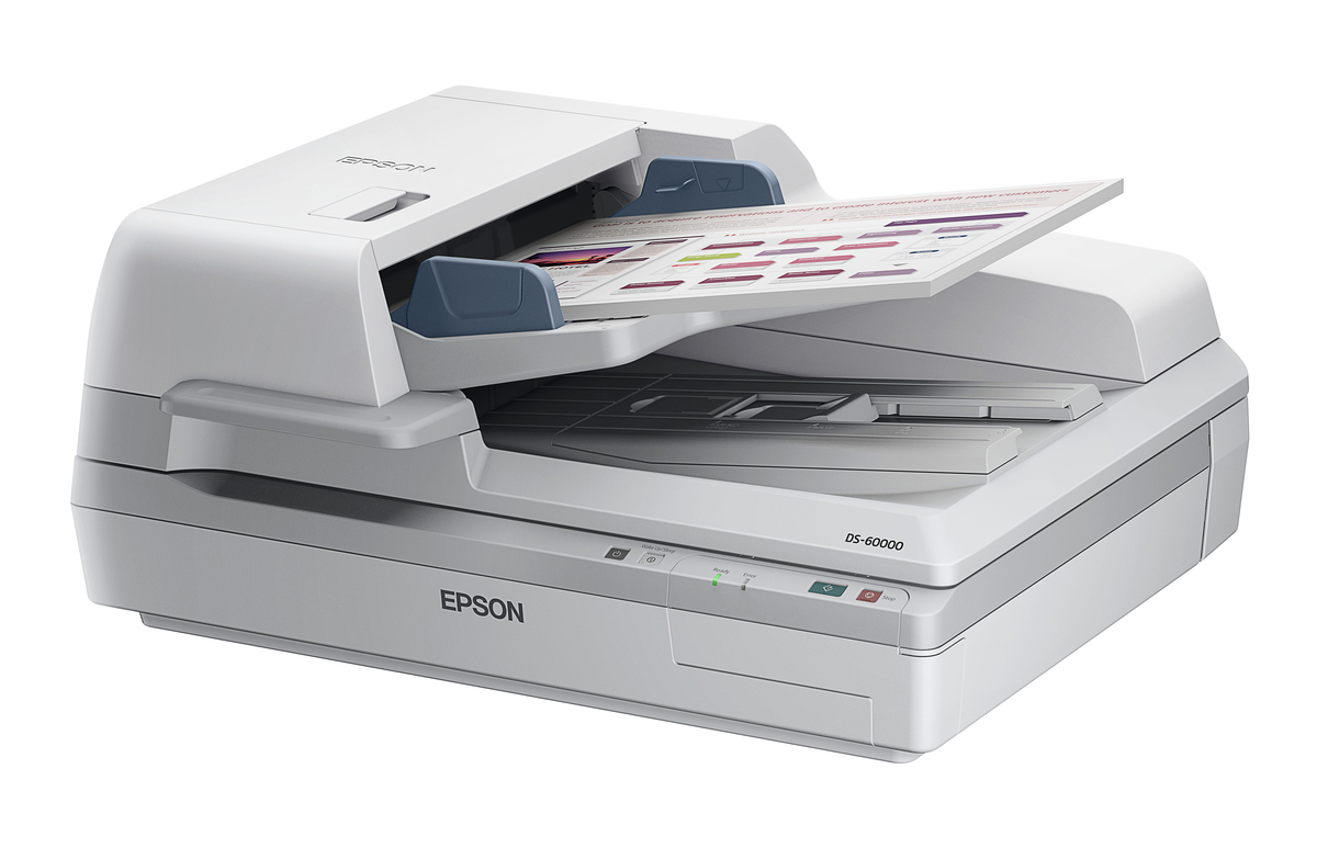 when you scan a document where does it go